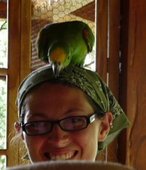 Parrot on head