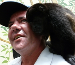 Howler Monkey rescue