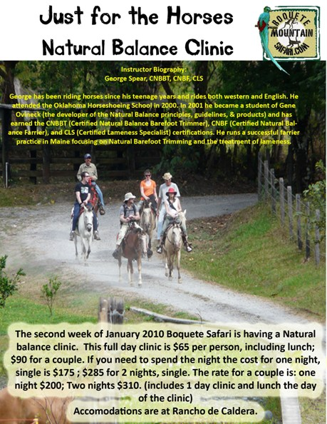 Horse clinic for web site