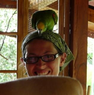 Parrotonhead